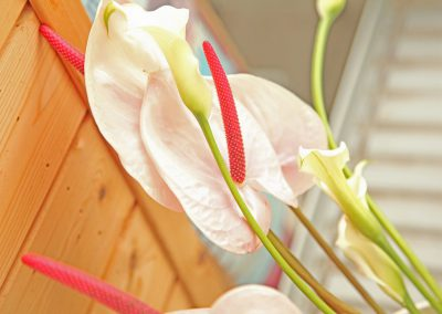 Arrangements Floraux Bussigny