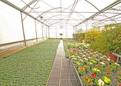 Jardinerie Crissier