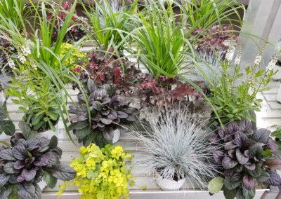 arrangements floraux et bouquets automne